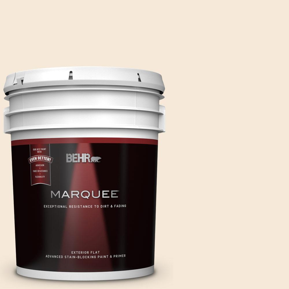 5 gal. #BXC-47 Marquee White Flat Exterior Paint and Primer in One